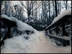 Winter Solitude IX
