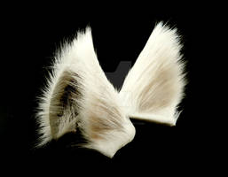 White Wolf Ears Inumimi