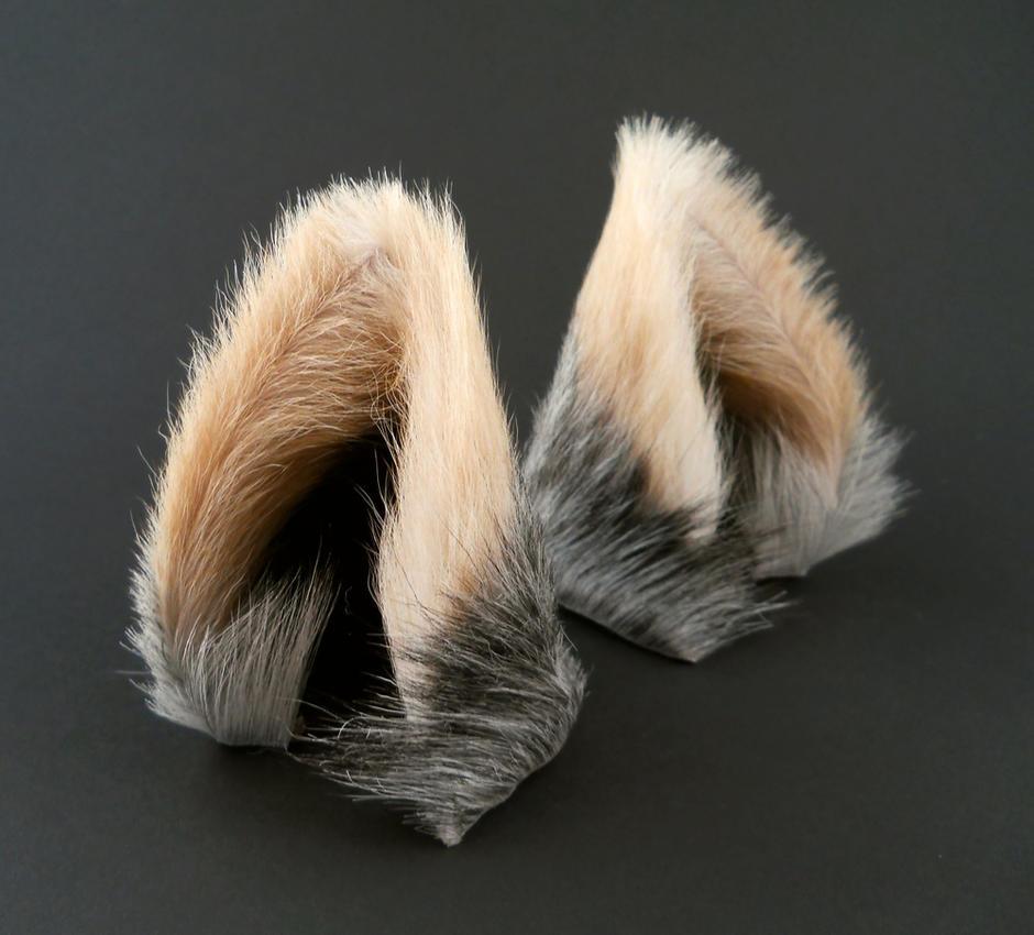 Cat And Dog Headbands