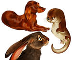 Dog, Otter, and Hare