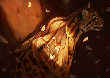 Clouded Leopard Moth by Pixxus