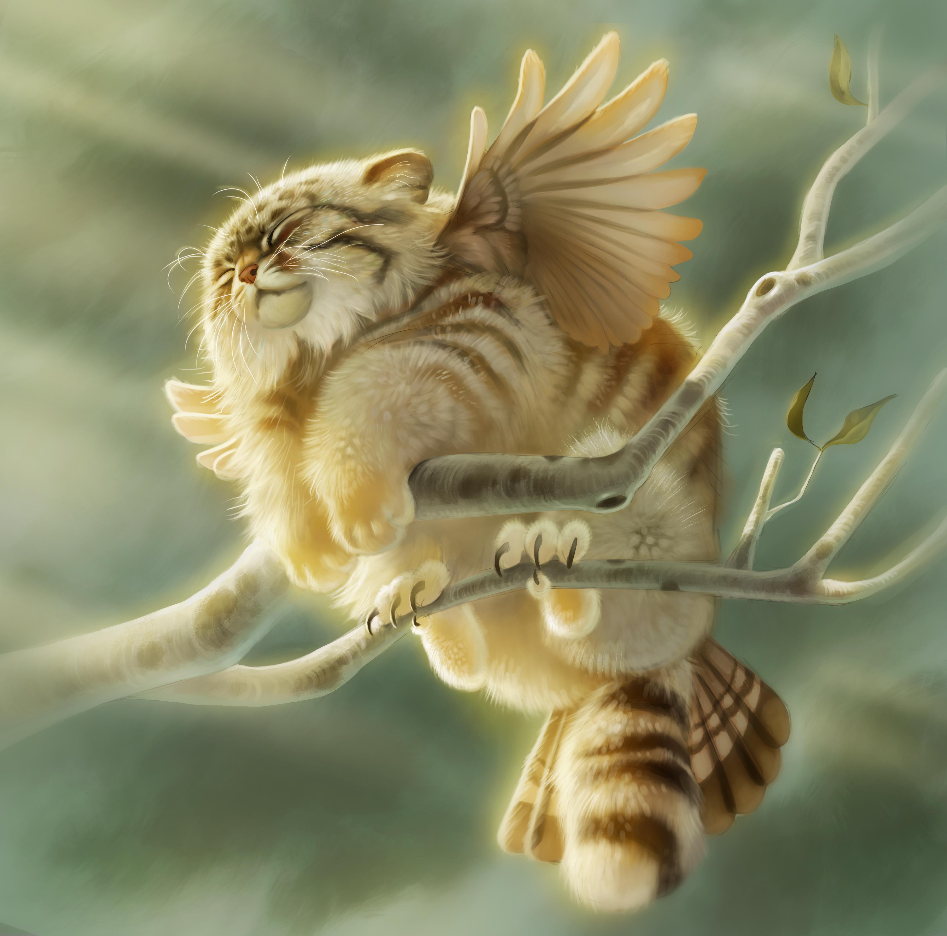 Pallas Cat Griffon