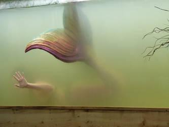 Beauty in the Water by Ninjagimli