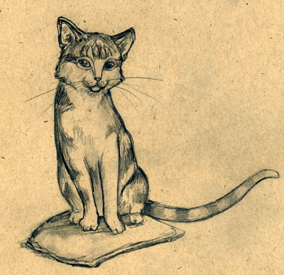 Cat Sketch by CAMartin
