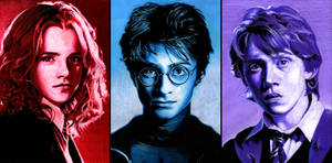 The Harry Potter Trio