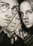 Harry Potter Trio Poster