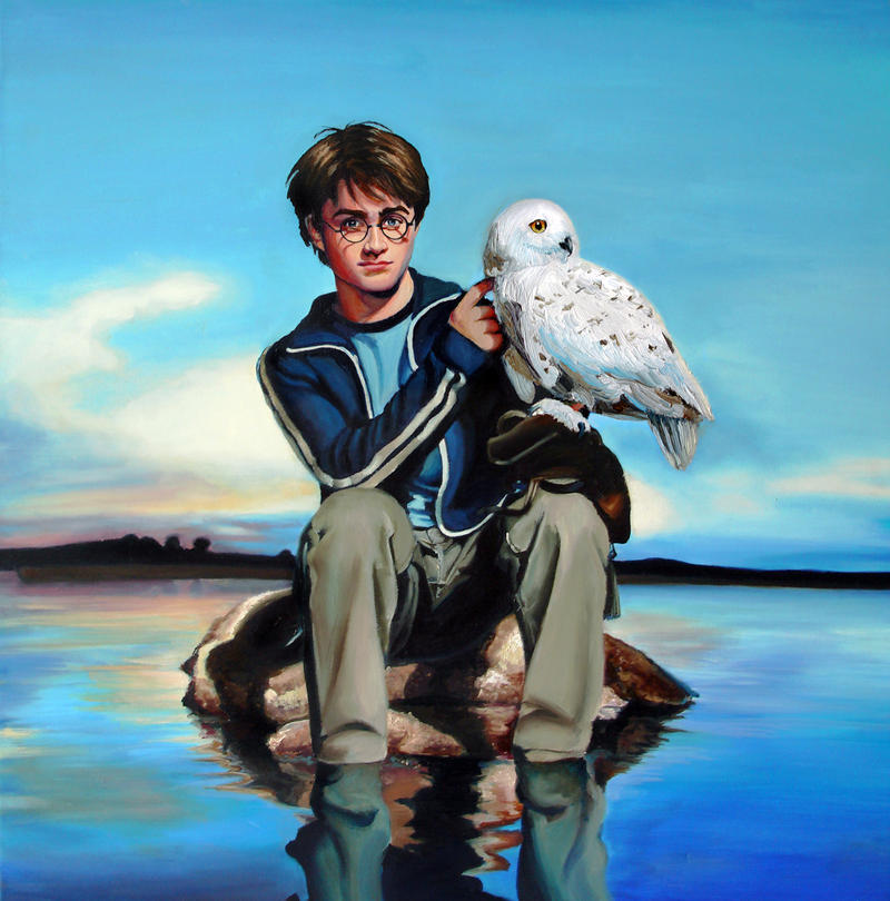 plaatjeswedstrijd 8 Harry_Potter_And_Hedwig_by_camartin