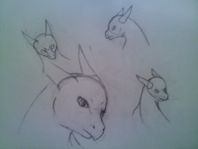 Various Dragon Headshot Sketches by DragonThunderstorm