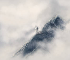 these mountains are mine by vlpn