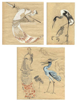 Kung Fu birds