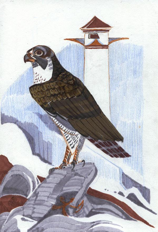 TF: the free bird