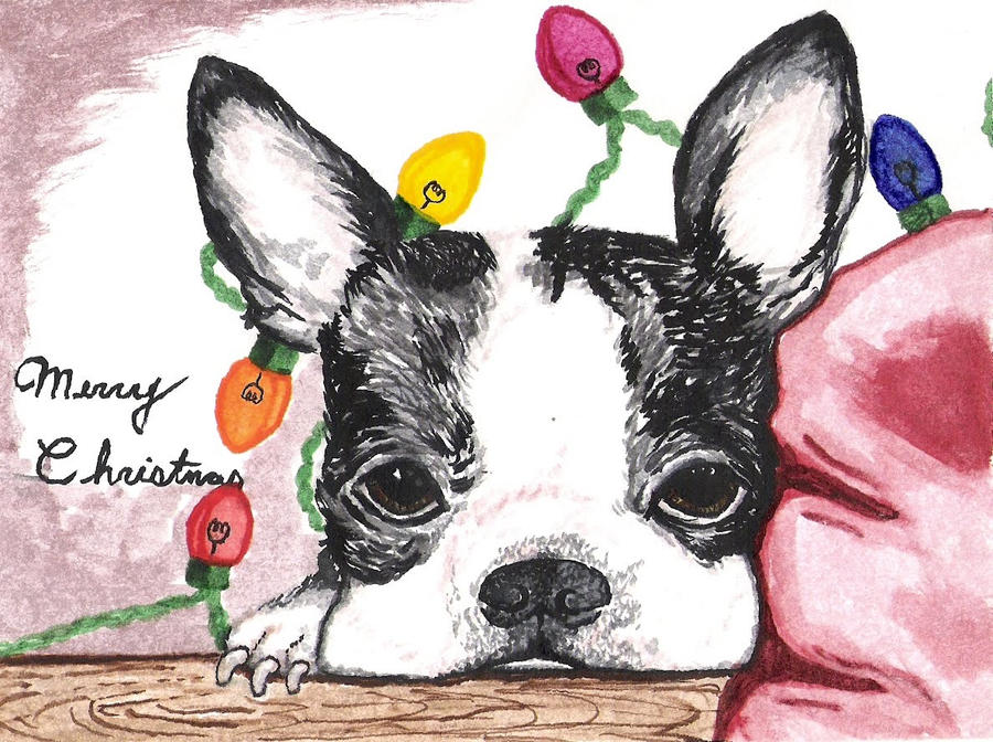 Seasonal Greeting Card Designs No. 1 by lawyersloveandbones