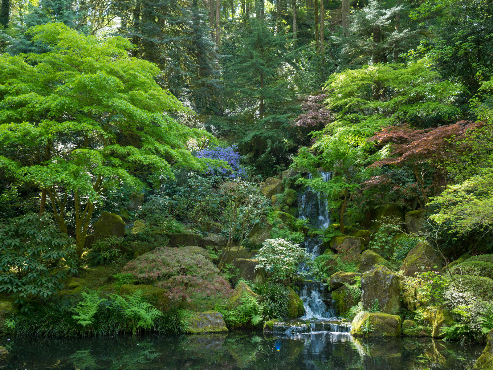Portland Japanese Garden by the3dman