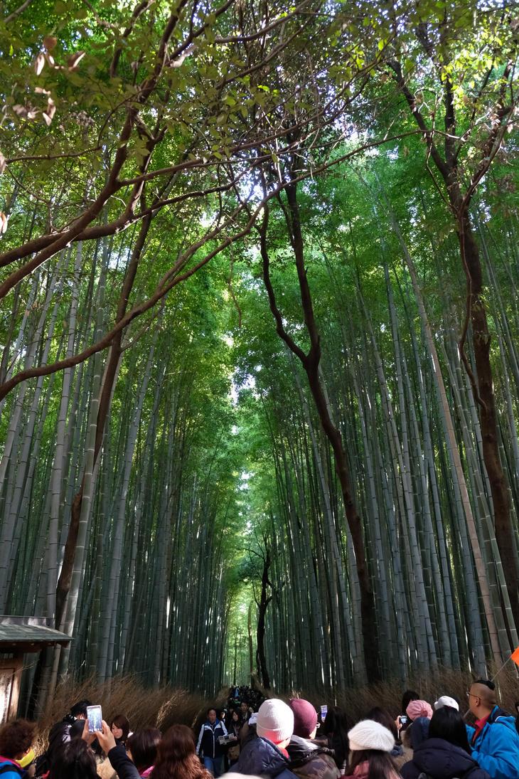 Arashiyama by the3dman