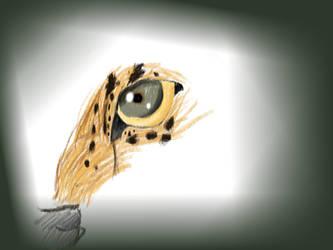 See the world through my eyes by SaitamaTale