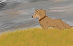 Wolfs Rain - Hige by shiranui14