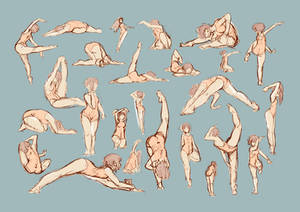 doodles Gym
