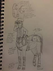 Rodeo Hero Costume