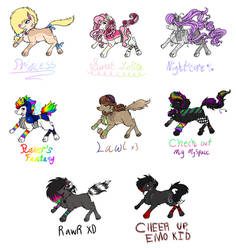 2008 Adopts [OPEN] by WitButch