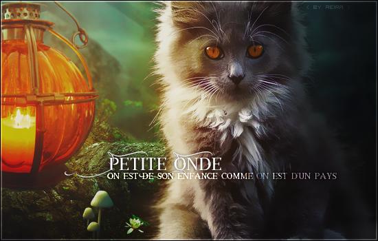 Petiteonde by nanally-sama
