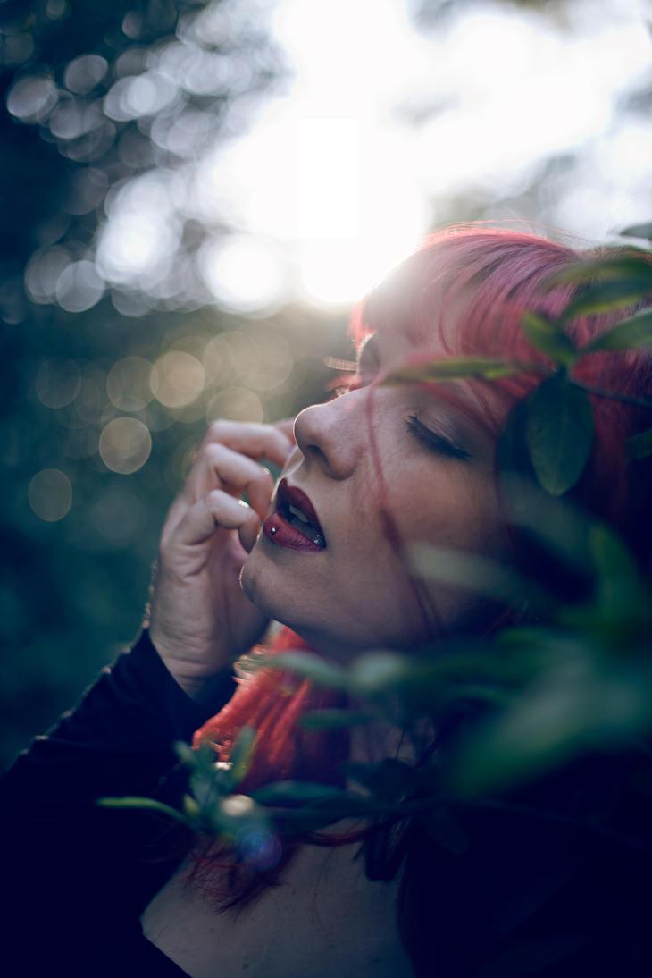 Autumn Sun by Real-Nela