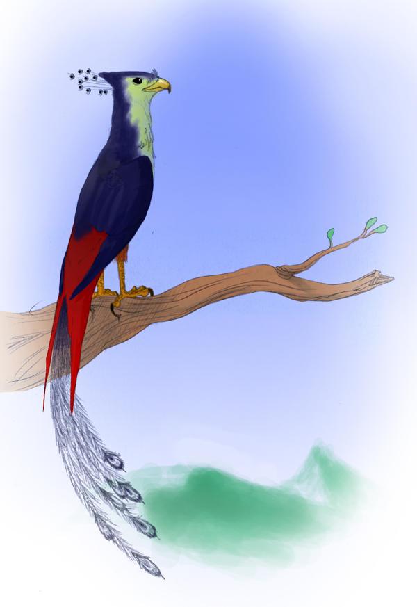 phoenix by veki-kun