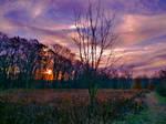 Westwynd Sunrise