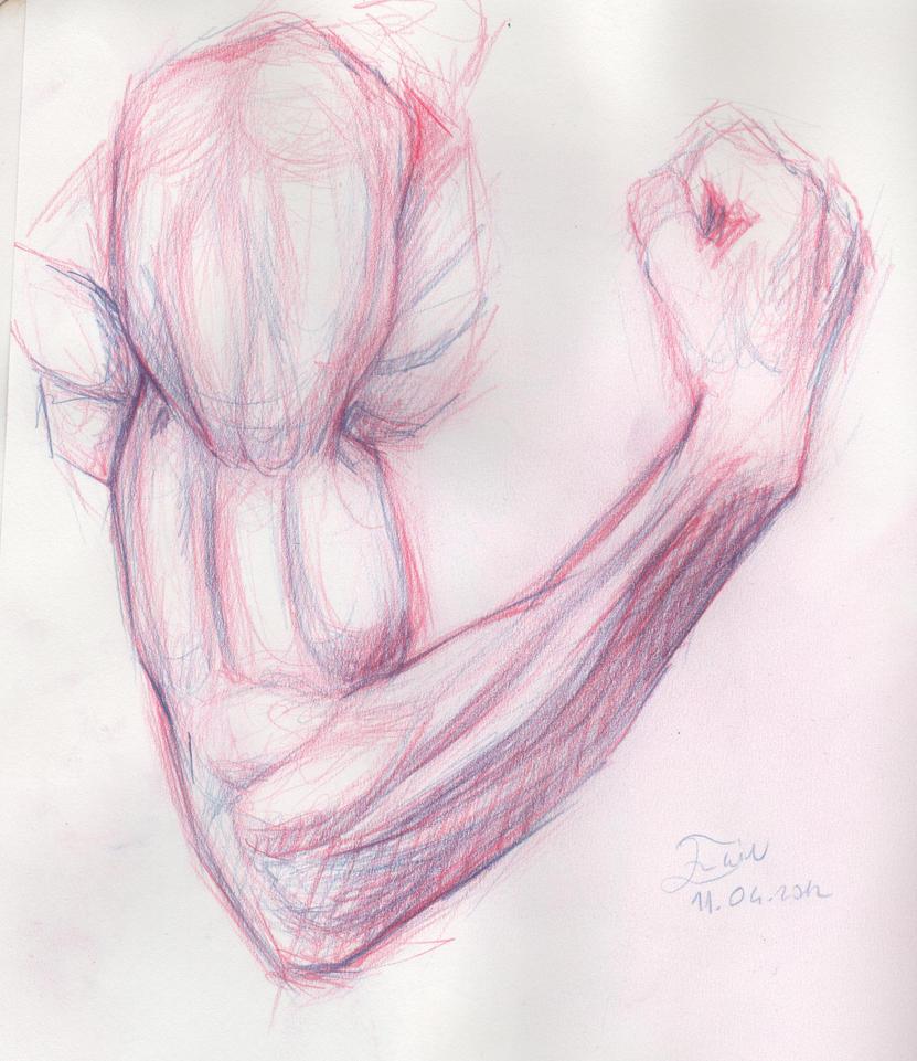 drawing arm sketch by brokensticksorginalo