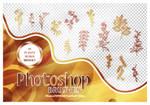 Photoshop Brushes Pack 22