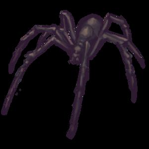 Spider by LittleMissMoosie
