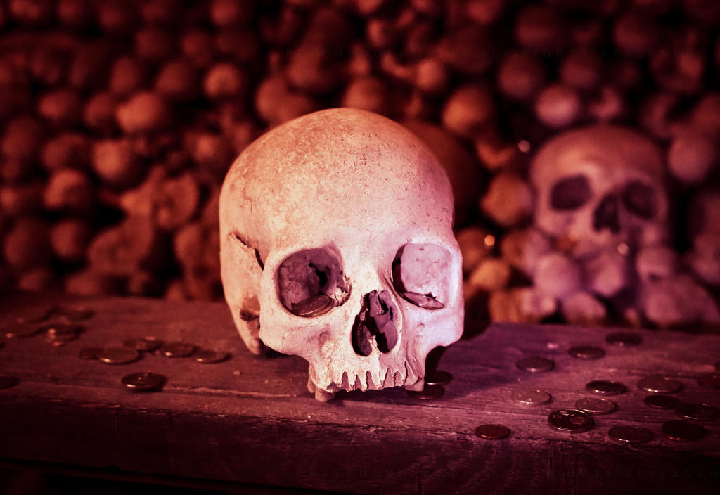 Skull by Pzychonoir