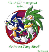 Thanks to Sonic X Sonic by ThePandamis