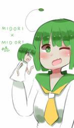 Midori meet Midori