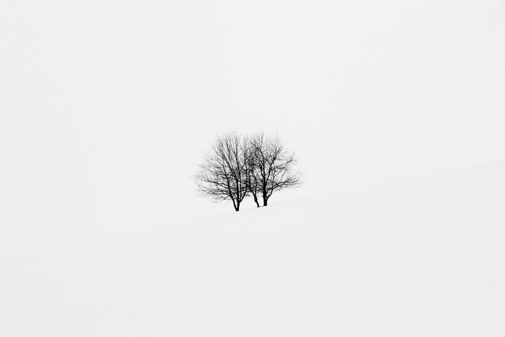 215 by Chi-Xibalba