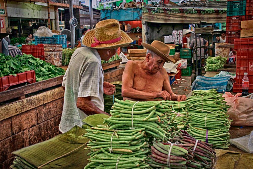 Market: The Merchant by Vanimelir