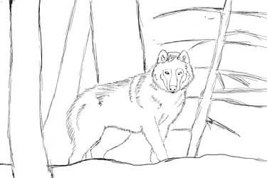 Wolf Sketche by octavariumSK