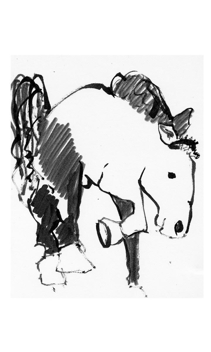 Stallion by SamuelZylstra2