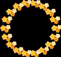 Circulo de estrellas by hitose