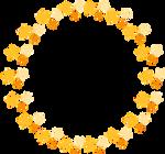 Circulo de estrellas