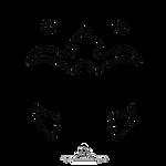 82. Ahsoka`s pattern little (Stroking) by RayneTheQueen