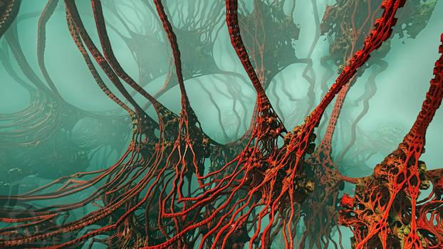 sea root