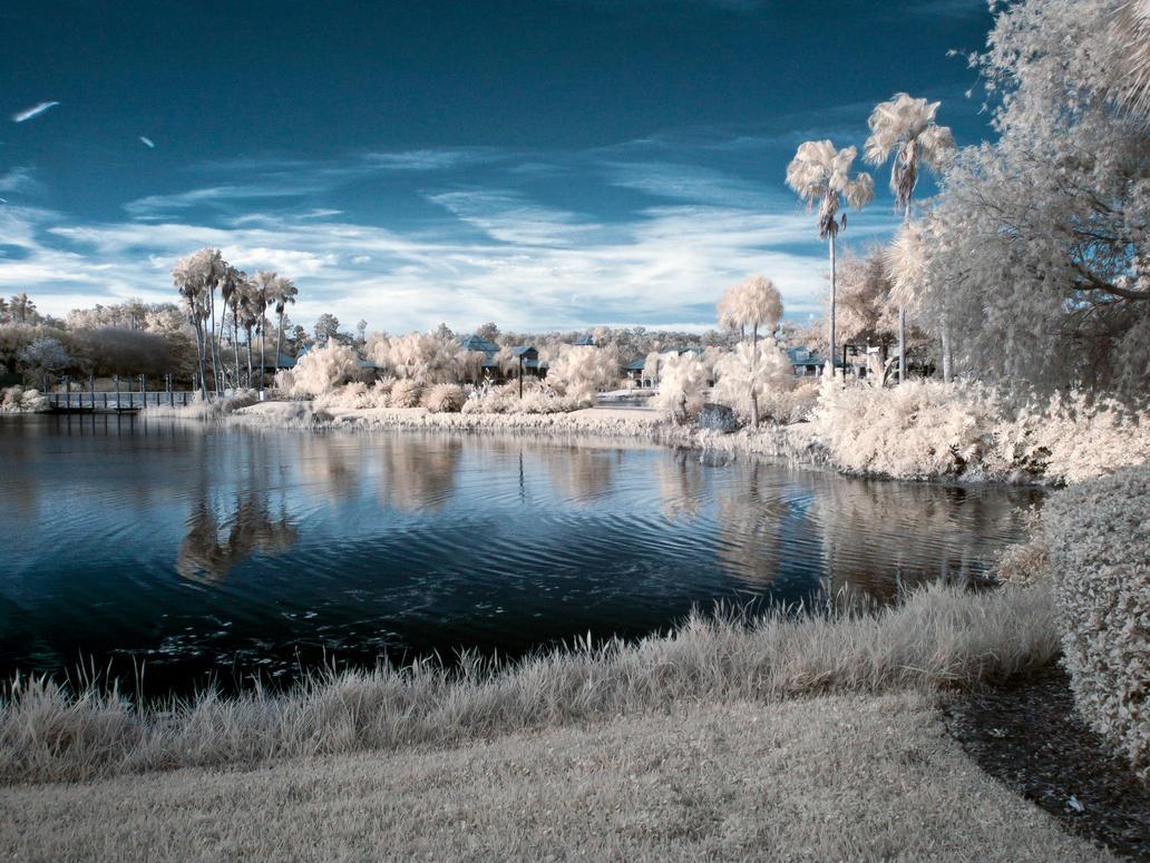 Infrared 57 by Weblen