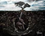 Life FromThe Soil