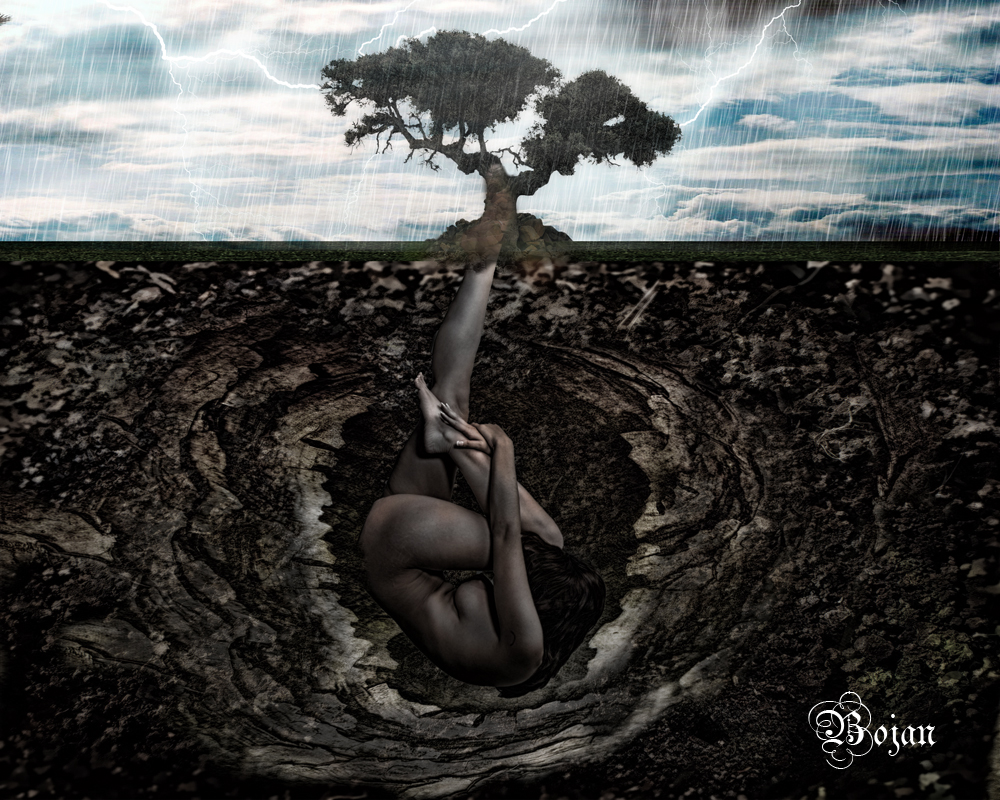 Life fromthe soil by bojan1558 on deviantart for Is soil living