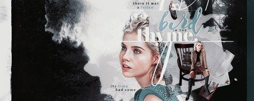 bird in the thyme