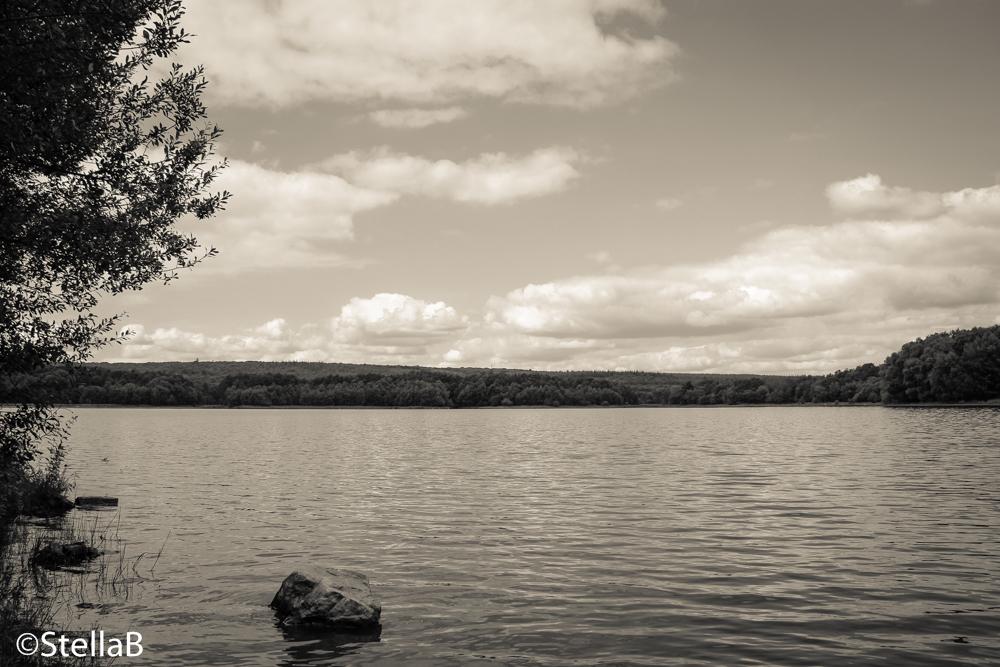 Lac de Paimpont by StellaBrettiana