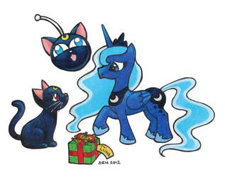 A Present For Luna by SarahsPlushNStuff