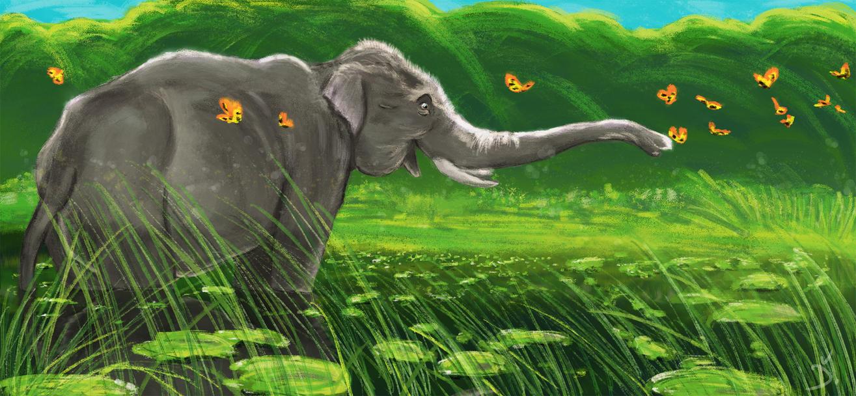 An Elephant by phtorxp