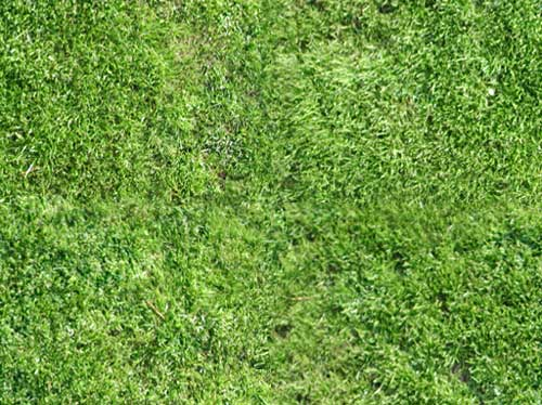grass texture repeating patter