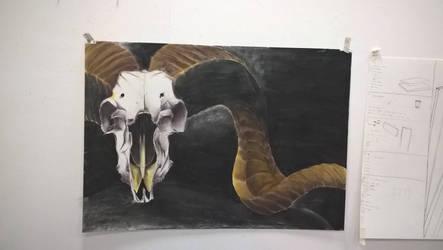 university drawing 2